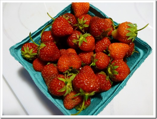 Ledyard Strawberies