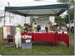 10 - Pine Hill