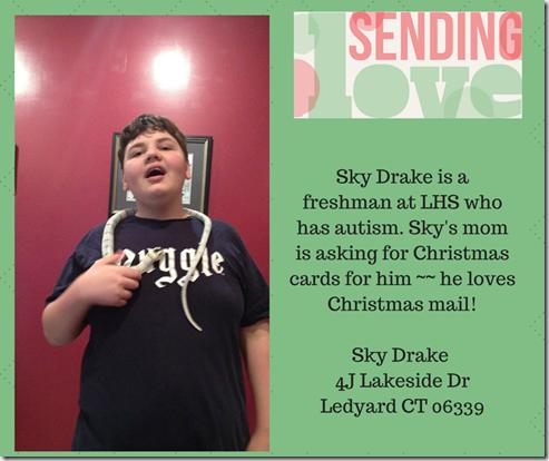 Sky Drake